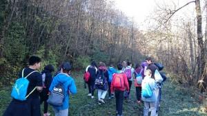 Excursió pel bosc de Planoles, escola de natura